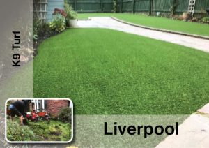 Artificial Grass Newport