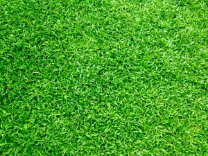 Why Quality Matters With Artificial Grass